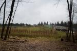 "Выход на ""зелёный мост"" из леса"