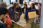 Осмотр выставки школьниками